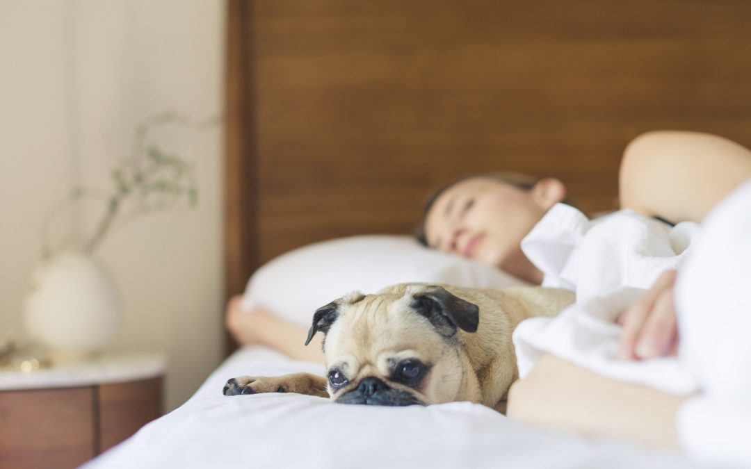 3 Ways Making Your Bed Can Change Your Life